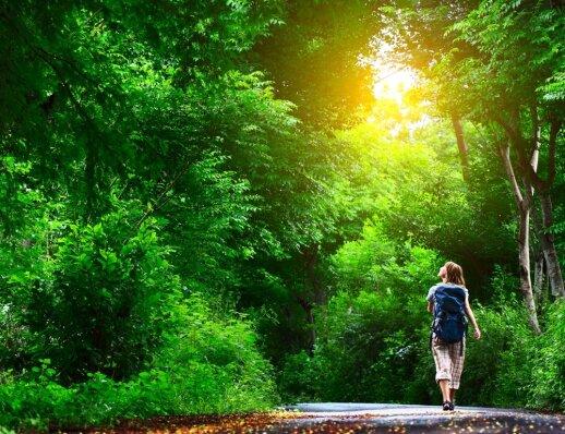 Gamtos terapija – ją oficialiai jau skiria Škotijos medikai