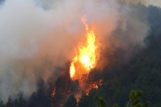 Prancūzijoje – milžiniškas gaisras: ugnį malšina šimtai ugniagesių