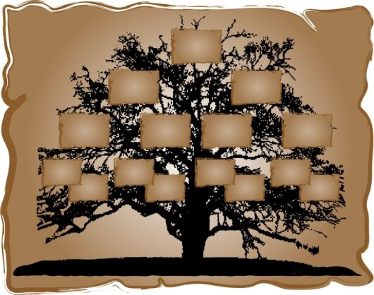 """Archyvarė: žmones """"veža"""" giminės medžio sudarymas"""